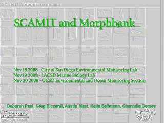 SCAMIT and Morphbank