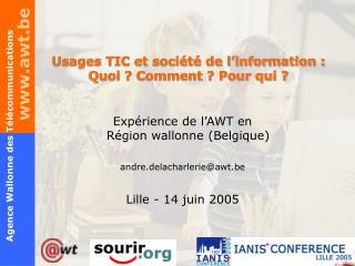 Usages TIC et société de l'information :  Quoi ? Comment ? Pour qui ?