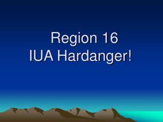 Region 16  IUA Hardanger!