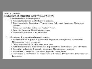 Estructura del gen