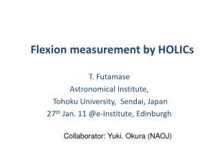 Flexion measurement by HOLICs
