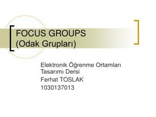 FOCUS GROUPS (Odak Grupları)