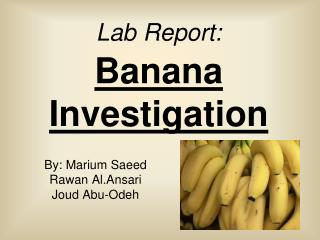 Lab Report: Banana Investigation