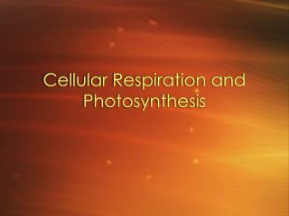 Cellular Respiration and Photosynthesis