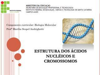 Componente curricular: Biologia Molecular Profª Marília Scopel Andrighetti