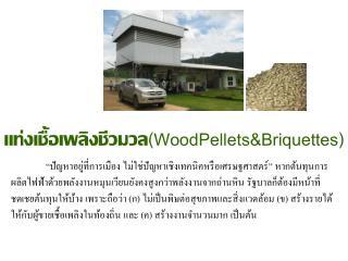 แท่งเชื้อเพลิงชีวมวล (WoodPellets&Briquettes)