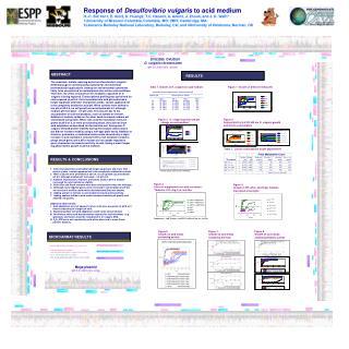 Response of  Desulfovibrio vulgaris  to acid medium