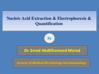 Nucleic Acid Extraction & Electrophoresis & Quantification