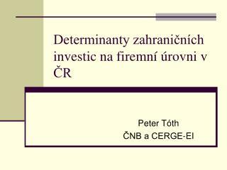 Determinanty zahraničních investic na firemní úrovni v ČR