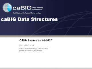 CaBIG Data Structures