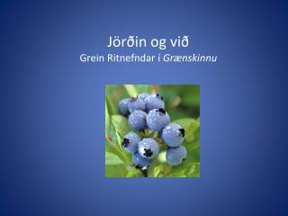 Jörðin og við Grein Ritnefndar í  Grænskinnu