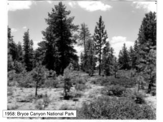 1958: Bryce Canyon National Park