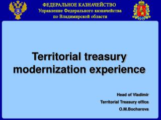 Territorial treasury modernization experience Head of Vladimir  Territorial Treasury office