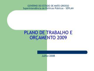 GOVERNO DO ESTADO DE MATO GROSSO Superintend ncia de Pol ticas P blicas - SEPLAN         PLANO DE TRABALHO E OR AMENTO 2