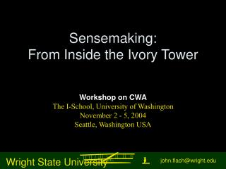 Sensemaking: From Inside the Ivory Tower
