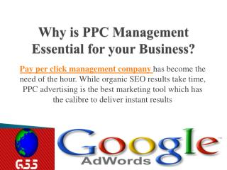 Global SEO Services- Need of PPC Mangement Company