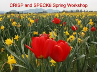 CRISP and SPECK8 Spring Workshop