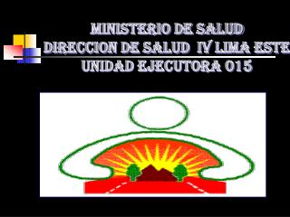 MINISTERIO DE SALUD DIRECCION DE SALUD  IV LIMA ESTE UNIDAD EJECUTORA 015