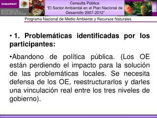1. Problemáticas identificadas por los participantes: