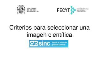 Criterios para seleccionar una imagen científica