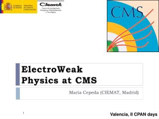 ElectroWeak  Physics at CMS