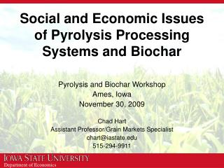 Social and Economic Issues of Pyrolysis Processing Systems and Biochar