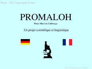 PROMALOH Pro jet  Ma rseille  Loh brügge