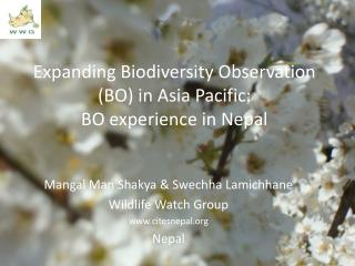 Expanding Biodiversity Observation (BO) in Asia Pacific:  BO experience in Nepal
