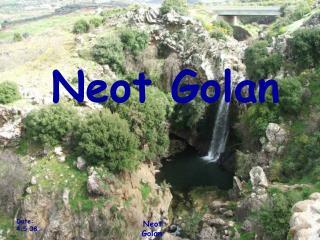 Neot Golan