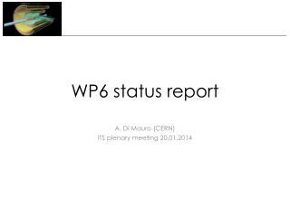 WP6 status report