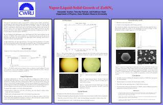 Vapor-Liquid-Solid  Growth of ZnSiN 2