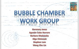 Bubble Chamber Work Group