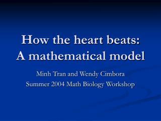 How the heart beats:  A mathematical model