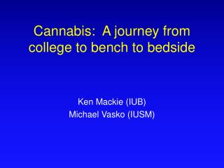 Cannabis:  A journey from college to bench to bedside