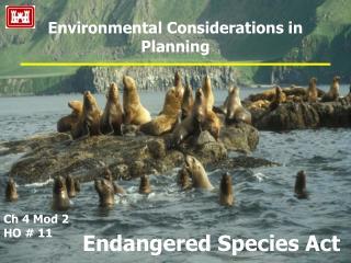 Environmental Considerations in Planning