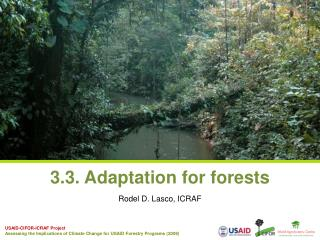 3.3. Adaptation for forests