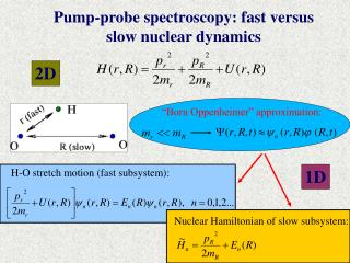 Pump-probe spectroscopy: fast versus slow nuclear dynamics