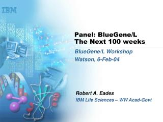 Panel: BlueGene/L The Next 100 weeks