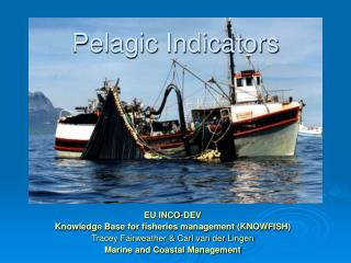 Pelagic Indicators