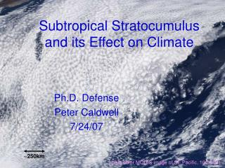Subtropical Stratocumulus and its Effect on Climate