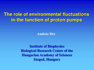 The role of environmental fluctuations in the function of proton pumps