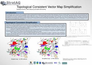 Topological Consistent Vector Map Simplification