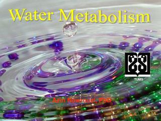 Water Metabolism