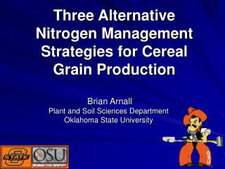 Three Alternative Nitrogen Management Strategies for Cereal Grain Production