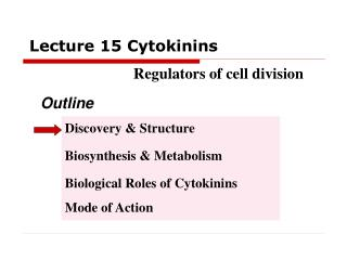 Lecture 15 Cytokinins                            Regulators of cell division
