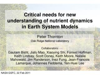 Critical needs for new understanding of nutrient dynamics in Earth System Models