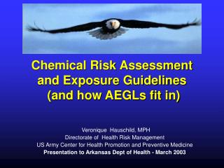 Chemical Risk Assessment and Exposure Guidelines  and how AEGLs fit in