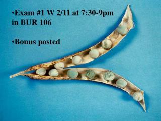 Exam #1 W 2/11 at 7:30-9pm in BUR 106 Bonus posted