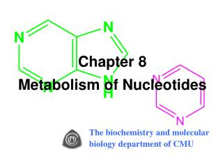 Chapter 8  Metabolism of Nucleotides