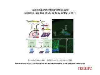 X Liu  et al .  Nature 000 ,  1 - 8  (2012) doi:10.1038/nature11028
